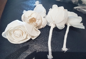 10 Sola flowers with rope (RIP flowers, slightly damaged)