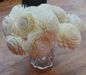 Premium Champagne Chrysanthemum with rope Approx 7 to 8cm 6 flowers