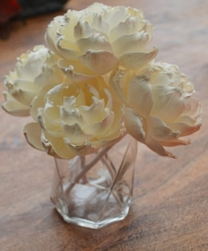 Premium Duchesse Peonies with rope Approx 7 to 8 cm 6 flowers